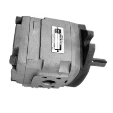 NACHI IPH-66B-80-80-11 IPH Double Pompe à engrenages