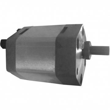 NACHI IPH-36B-10-80-11 IPH Double Pompe à engrenages