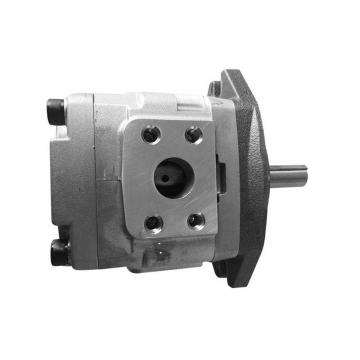 NACHI IPH-46B-25-125-11 IPH Double Pompe à engrenages