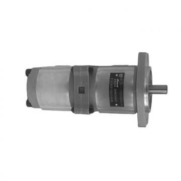 NACHI IPH-46B IPH Double Pompe à engrenages