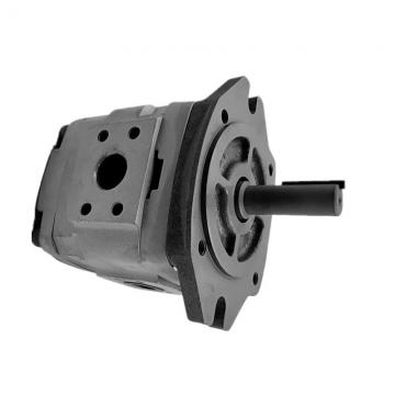 NACHI IPH-45B-32-50-11 IPH Double Pompe à engrenages