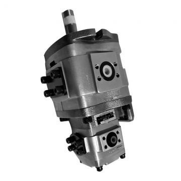 NACHI IPH-66B-100-125-11 IPH Double Pompe à engrenages