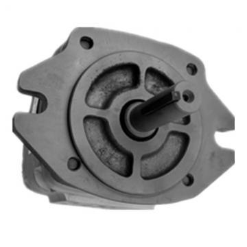 NACHI IPH-5A-50-21 IPH Pompe à engrenages