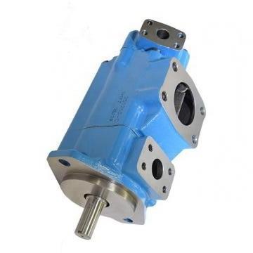 Vickers PV032R1K1T1NGLZ+PVAC1ECMNSJW35 PV 196 pompe à piston