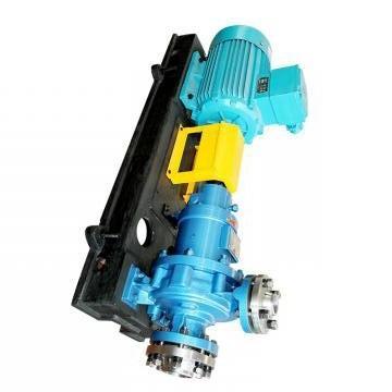Vickers PV032R1K1T1NMRZ+PVAC2PCMNSJW35 PV 196 pompe à piston