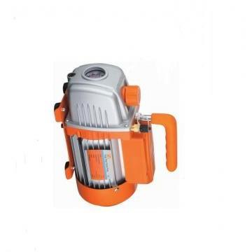 Vickers PV028R9K1T1NDCC4545K0196 PV 196 pompe à piston