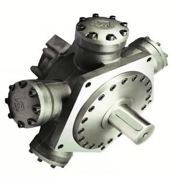 Vickers PV032R1K1T1NMLZ+PVAC1ECMNSJW35 PV 196 pompe à piston