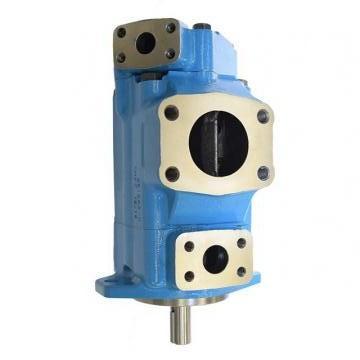 Vickers PV032R1K1T1NMMZ+PVAC2PCMNSJW35 PV 196 pompe à piston