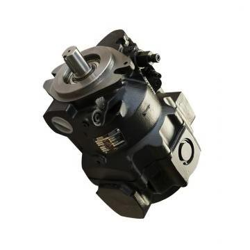 Vickers PV032R1D3AYNHCC4545 PV 196 pompe à piston