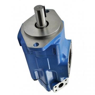 Vickers V20101F11B5B1BB12 pompe à palettes