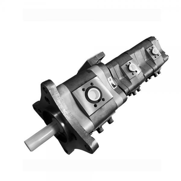 NACHI IPH-55B-40-40-11 IPH Double Pompe à engrenages #2 image