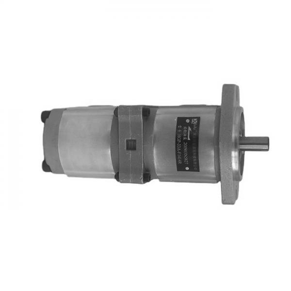 NACHI IPH-55B-40-40-11 IPH Double Pompe à engrenages #3 image